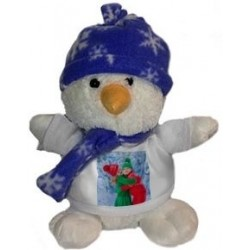 Peluche photo bonhomme neige